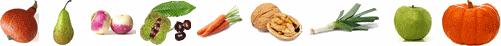 fruits et legumes d'automne